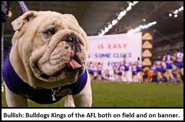 thumbnail_bulldog-and-banner